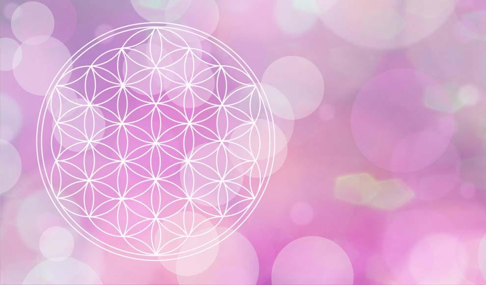 Symbol der Blume des Lebens